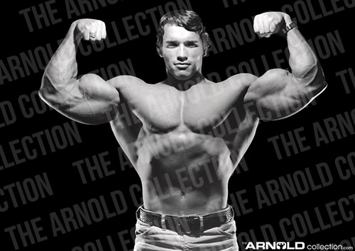 Double Bicep logo watermarked