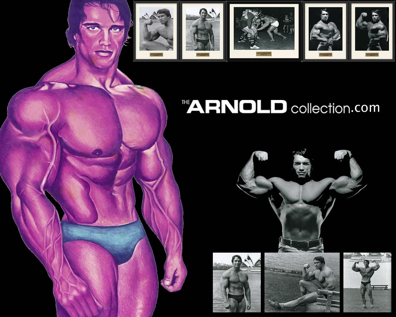 Arnold Schwarzenegger Desktop Background