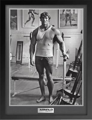 arnold schwarzenegger workout